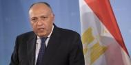 """مصر لأمريكا: حل القضية الفلسطينية ينبغي أن يكون على أساس """"حل الدولتين"""""""