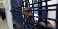الأسير عمر يتنفس نسائم الحرية بعد 19 عامًا في سجون الاحتلال