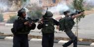 """إصابة 10 مواطنين باعتداءات قوات الاحتلال خلال تدميرها منازل """"وادي الحمص"""""""