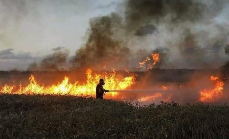 النيران تلتهم 3 مواقع في مستوطنات غلاف غزة بفعل البالونات الحارقة