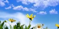 الأرصاد: ارتفاع ملموس وأجواء شديدة الحرارة