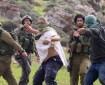 """مستوطنون يهاجمون عمال في حي """"تل ارميدة"""" وسط الخليل"""