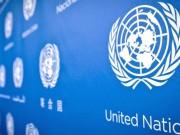 6 شاحنات محملة بمساعدات إنسانية من الأمم المتحدة تصل مناطق دونباس