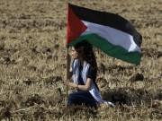 "انطلاق مهرجان فلسطين للجاز ""مهرجاز"""