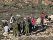 الاحتلال يستولي على رافعة للكهرباء ومركبة خدمات شمال الخليل