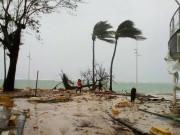 """إعصار """"مولاف"""" يضرب سواحل فيتنام وإجلاء مئات الآلاف"""