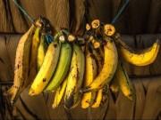بخطأ مأساوي.. الموز ينهي حياة فتى في مصر