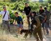 """""""المجلس الوطني الفلسطيني"""": إعلان فرض سيادة إسرائيل على المستوطنات خرق جديد للقانون الدولي"""