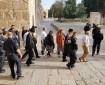 عشرات المستوطنين يقتحمون الأقصى تحت حراسة مشددة من شرطة الاحتلال
