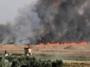 """إعلام عبري: بالونات حارقة أطلقت من القطاع تشعل النيران في أحراش """"أشكول"""""""