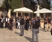 99متطرفا يقتحمون المسجد الأقصى بحراسة مشددة