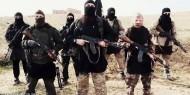 """""""كردستان العراق"""": 3530 إيزيديًا ينجون من قبضة داعش"""