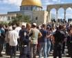 متطرفون يهود يدعون لاقتحام الأقصى غدًا الأحد