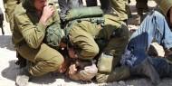 الاحتلال يعتدي على مسن ويعتقل نجله شمال أريحا