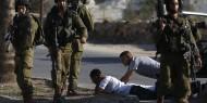 بتسيلم: نيابة الاحتلال تجيز للجنود إعدام الفلسطينيين دون محاسبة