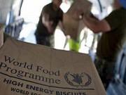 برنامج الغذاء العالمي يعلن وصول المساعدات لـ12.4 مليون يمني