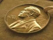 317 مرشحًا لجائرة نوبل للسلام