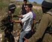 الاحتلال يطرد مزارعين من أرضهم تحت تهديد السلاح