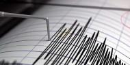 زلزال بقوة 4.6 ريختر يضرب إيران