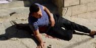"""الخارجية: إعدام الشهيد """"البدوي"""" إمعان في استهداف وقتل الفلسطينيين"""