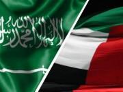 السعودية والإمارات تحصدان عضوية اليونسكو