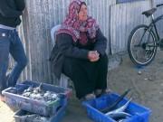 حسبة السمك بلا زائرين بسبب الظروف الاقتصادية الصعبة للسكان