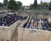 """الاحتلال يمنع صلاة الجمعة خشية تفشي فيروس """"كورونا"""""""