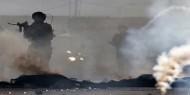 إصابات بغاز الاحتلال واحتجاز صحفي في تقوع