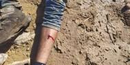 إصابة عامل في الداخل المحتل