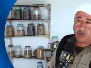مزارع فلسطيني ينشئ بنك وطني لحفظ البذور الزراعية