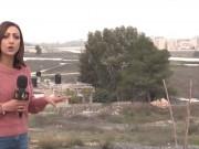 حي استيطاني ضخم على أراضي مطار قلنديا