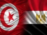 السيسي يوافق على زوج وزير مصري من مواطنة تونسية