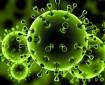 311 وفاة وأكثر من 11 ألف إصابة جديدة بفيروس كورونا في الهند