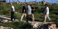 مستوطنون يهاجمون رعاة الأغنام شمال رام الله