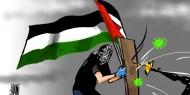 فلسطين تقاوم الاحتلال وكورونا