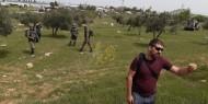 حرق 30 دونما من المحاصيل الزراعية جنوب الخليل