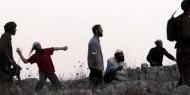 نابلس: مستوطنون يهاجمون مركبات المواطنين بالحجارة في قرية دوما