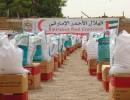 الإمارات تقدم 9 أطنان مساعدات طبية لمدغشقر