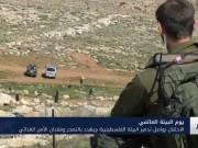 الاحتلال يواصل تدمير البيئة الفلسطينية ويهدد بالتصحر وفقدان الأمن الغذائي