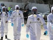 جنين: حالتا وفاة و19 إصابة جديدة بفيروس كورونا