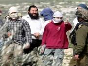 مستوطنون يهاجمون أراضي المواطنين شرقي أريحا