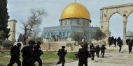 عشرات المستوطنين يقتحمون المسجد الأقصى تحت حماية شرطة الاحتلال