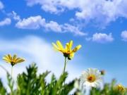 الأرصاد: انخفاض طفيف على درجات الحرارة