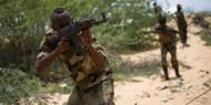 مسلحون مجهولون يقتلون 27 مدنيًا وسط مالي