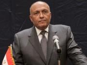 مصر وألمانيا يرفضان التدخلات الخارجية في الشأن الليبي