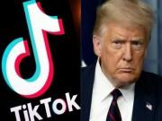 """ترامب يمهل """"تيك توك"""" ستة أسابيع لبيع عملياته لشركة أمريكية"""