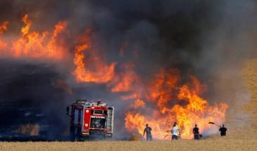 الإعلام العبري: اندلاع حرائق في غلاف غزة بفعل البالونات الحارقة