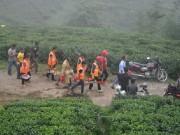 43 قتيلا جراء انهيار أرضى في مزرعة شاي جنوب الهند