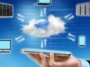 التخصصات النوعية في تكنولوجيا المعلومات