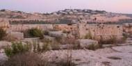 قلعة دير سمعان تحفة تاريخية في عين الاستيطان